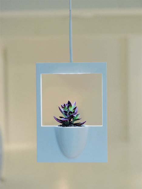 Beautiful polaroid flower vase by Jung Hwa Jin 2 Beautiful polaroid flower vase by Jung Hwa Jin   feel natural freshness in your room