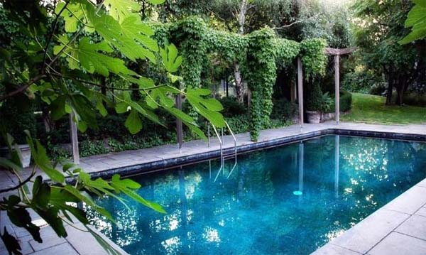 Swimming pools the new design inspiration from eckersley for Garden designs around pools